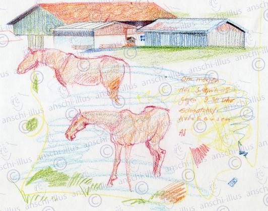 Bauernhof_und_Pferde