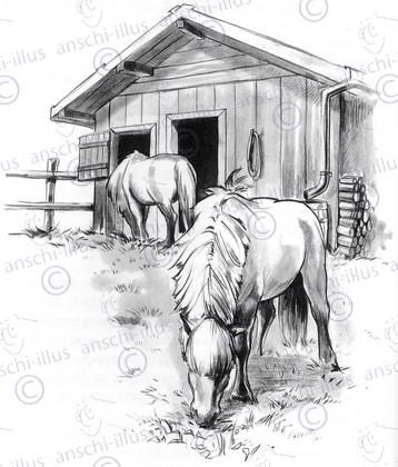 Pferde_im_Offenstall